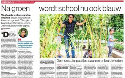 Publicatie Brabants Dagblad